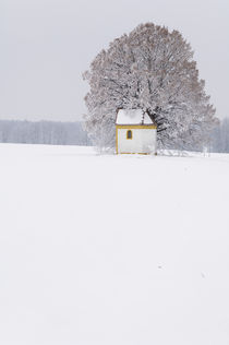 Frosty morning in the Bavarian countryside. von Tom Hanslien