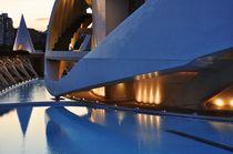 Valencia, Palau de les Arts 4 von Frank Rother