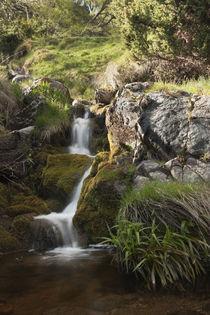 Findhorn Cascade von Richard Winn