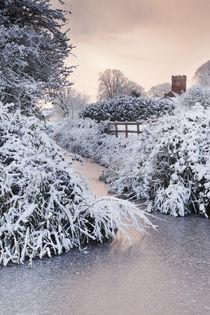 Wembdon in the Snow by Richard Winn