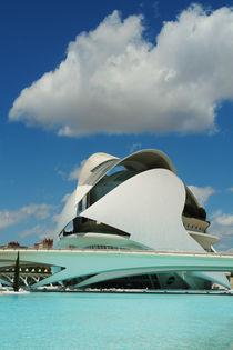 Valencia, Palau de les Arts Reina Sofía von Frank Rother