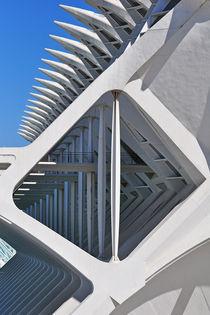Valencia, Museo de las Ciencias Príncipe Felipe von Frank Rother