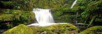 McLean Falls von Ben Bolden