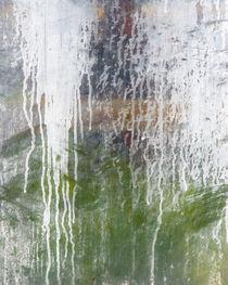 Greenhouse 462 von Thom Gourley