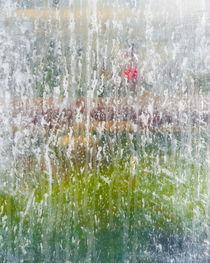 Greenhouse 507 von Thom Gourley