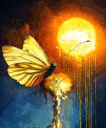 Lachender Schmetterling von Matthias Töpfer