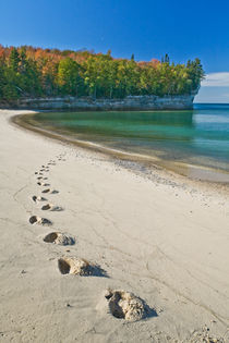 Footprints on the Shore by Lee Rentz