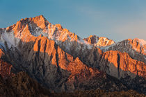 Sierra in Morning Light by Lee Rentz