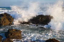 Crashing Pacific Wave by Lee Rentz