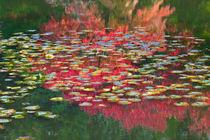 Homage to Monet in a Japanese Garden von Lee Rentz