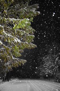 Country Road in Winter von Lee Rentz