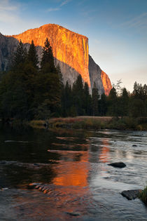 El Capitan at Sunset by Lee Rentz