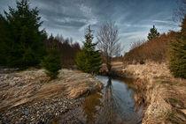 Elberndorfe Tal von Evgeny Dryakhlov