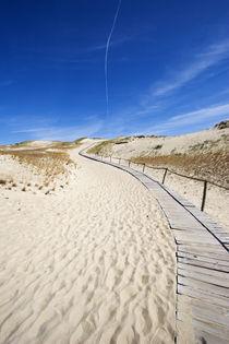 wooden footpath von Darius Norvilas