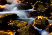 autumn waterfall von Darius Norvilas