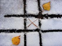 autumn-winter game von Darius Norvilas