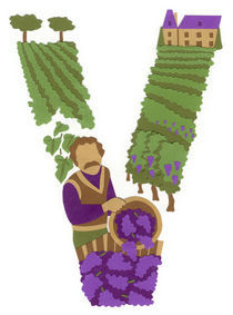 V as Vigneron (Winegrower) by Anastassia Elias