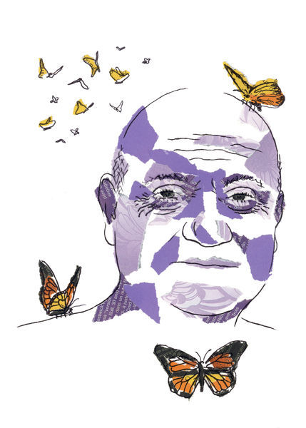 Roi-papillons-grand-nettoie