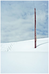 Park City Snow #1 by Bryony Shearmur