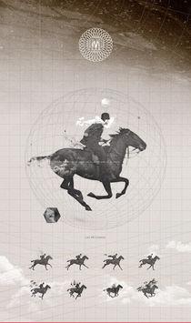 Rider by Oscar Matamora