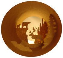 Far North. Reindeer (Grand Nord. Renne) von Anastassia Elias