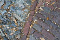 savannah cobblestones by ushkaphotography