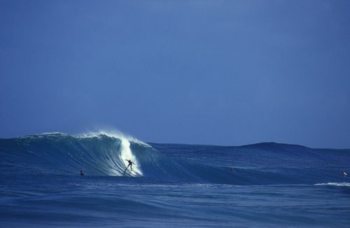 Surfers-dream