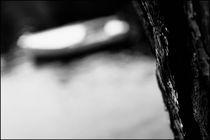 Foggy Memories 12 by Marin Drazancic