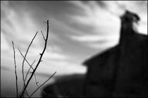 Foggy Memories 10 von Marin Drazancic