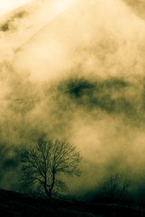 The Mist von Luis Alfonso Lopez