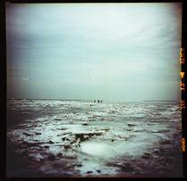 winter time by Roman Kulyk