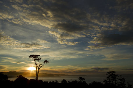 Catlins-coast-sunrise-1