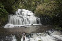 Purakaunui Falls by Ross Curtis