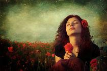 Summer Dream by David Fiscaleanu