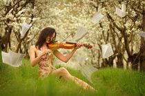 La Primavera von David Fiscaleanu