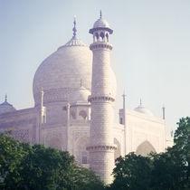 Morning Taj Mahal, India
