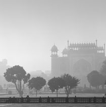 Misty morning, India by Eugene Zhulkov