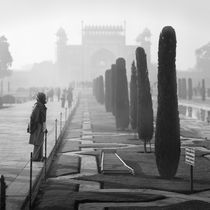 Misty morning, India
