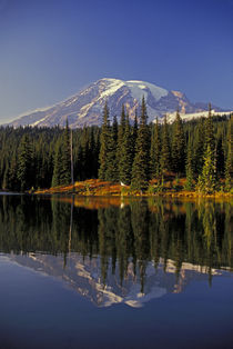 Reflection Lake, Mount Rainier in Fall by Wolfgang Kaehler