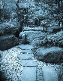 Stone walkway to well (cyanotype) von Chris Bidleman