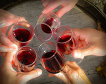 Friends and wine toasting by Chris Bidleman