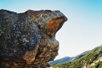 Lizards Mouth Rock, California von Melissa Salter