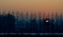 magic sunset von emanuele molinari