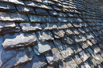 Ancient Slate Roof von Joel Morin
