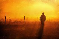 Before Darkness von David Fiscaleanu