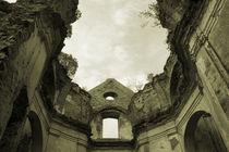 temple ruins by Jacek Maczka