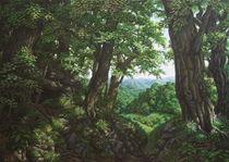 Innere Natur/ Hohlweg ins Tal by Ute Hegel