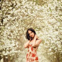Spring von David Fiscaleanu