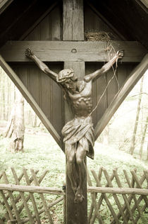 Jesus im Wald I by Thomas Schaefer