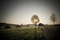 Morgenstimmung am Vogelsberg XIV von Thomas Schaefer
